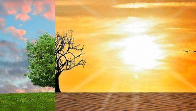 climate-change 2063240 by tumisu pixabay
