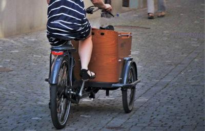 rickshaw 4463397 by pasja1000 pixabay 850